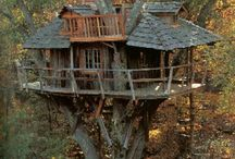 I Want A Treehouse
