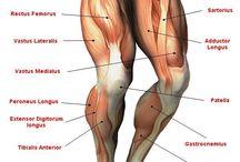 근육근육근육