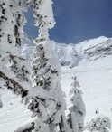 Skiing / Powder Matt loves the mountains and Skiing / by Powder Matt
