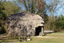 Digs the Woodland Indian Hamlet / A Woodland Hamlet like those occupied by the Yaocomico people. Visit witchotts (longhouses) and learn the fascinating history of how  these people lived in peaceful co-existence with the English colonists.