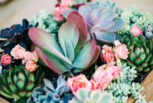 Flower and Foliage Arrangement