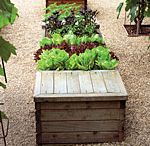 Edible Gardens / by Tulsa Landscape