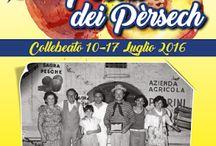 Festa delle Pesche dal 10 al 17 Luglio Collebeato (BS)