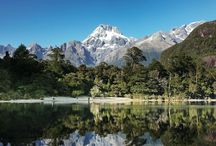 The Hollyford Track