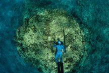 Awesome pictures / Best spearfishing pictures
