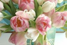 Printemps - Spring / Printemps, fleurs, jardin, idées...