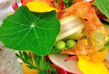 Vegetarian Dishes / Vegetarian recipes from some of the world's best chefs and Michelin starred restaurants.