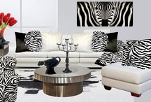 Zebra / by Anything Animals  Decor N Linens