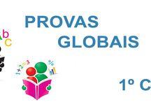 Provas Globais | 1º e 2º Ciclo AEEP