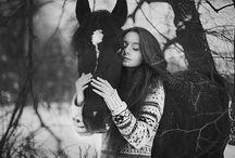 No snow winter horse shoot