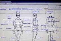 modelar figuras humanas en porcelana fria /  Esta aplicación que desarrolle junto a mi esposo nos permite tener las distintas medidas para poder realizar cualquier figura en distintas escalas con solo colocar la altura, en que la queremos realizar. espero les sea de utilidad