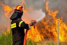 Μάχη με τις φλόγες δίνουν οι πυροσβέστες σε τέσσερα πύρινα μέτωπα