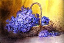 Цветы в корзинах и горшках