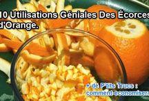 orange _ pelures