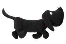 Honden * Dogs