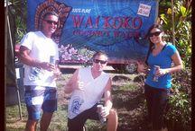 Wai Koko Crew