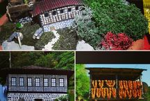miniaturegarden