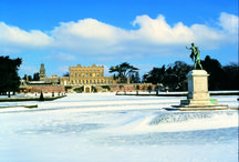 Christmas at Cliveden / by Cliveden House