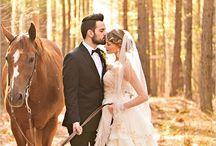 Horse Wedding Photography