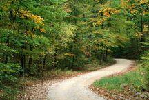Roads & Paths / #road, #path, #travel, #spiritual