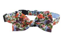 Collars / Your pup is sure to look classic and chic wearing a bowtie collar from Hip Puppy. The bowtie attachment is both moveable and removable and can be positioned in the front for the guys or to the side or back for the gals.