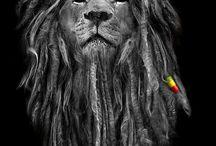 Rasta-dreads-reggae