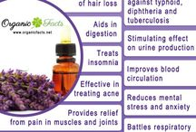 Essential Oils - Health benefits