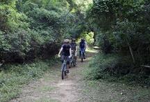SA mountain biking