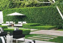 Black white and green gardens