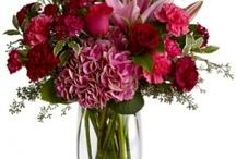 romance / by Terrafolia Flowers