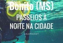 Mato Grosso do Sul e Mato Grosso