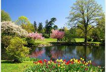 springtime!!!!