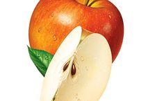 사과 기초디자인