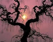 trees *.*