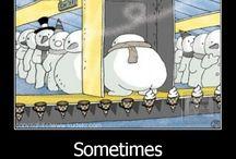 Just plain funny. / by Awilda Legarreta