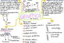 Enem/Biologia