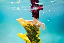 Under water photography
