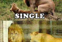 hahahaha.!!