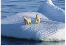 Global Warming and the Solutions / Facts and statistics about Global Warming. We also look at what are some potential solutions to this growing problem.