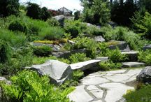 Sloping garden solutions / different ways to solve a sloping garden