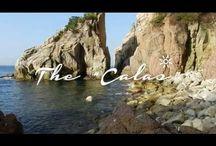 Videos / Els millors videos sobre Blanes, la Costa Brava i voltants.