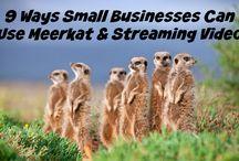 Meerkat Resources