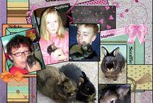 Onze konijnen en cavia / hier mijn lo's met Snuffie / Misty , de konijnen en Queenie , de cavia