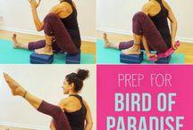 Yoga prep for asanas