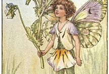 Flower Fairies / by Margaret Pennyfather