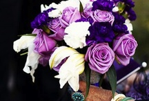 Wedding Ideas!! Purple, Black, Silver / November 24, 2012, I get to marry the man of my dreams :) / by April Henry