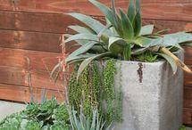 garden-stuff