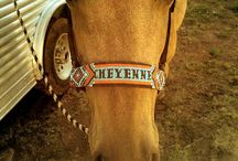<3 Cool Horse Tack & Accessories!! <3 / If I won a million dollars, I would buy a horse & all this tack!!!!! :) / by Hannah Temples