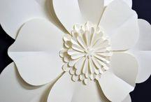 kwiatowa
