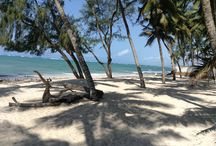 Holiday in Mombasa / My trip to Mombasa